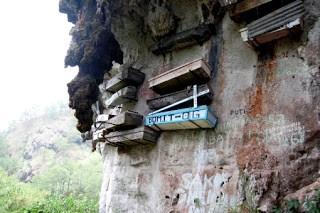Los ataúdes colgantes de los bos