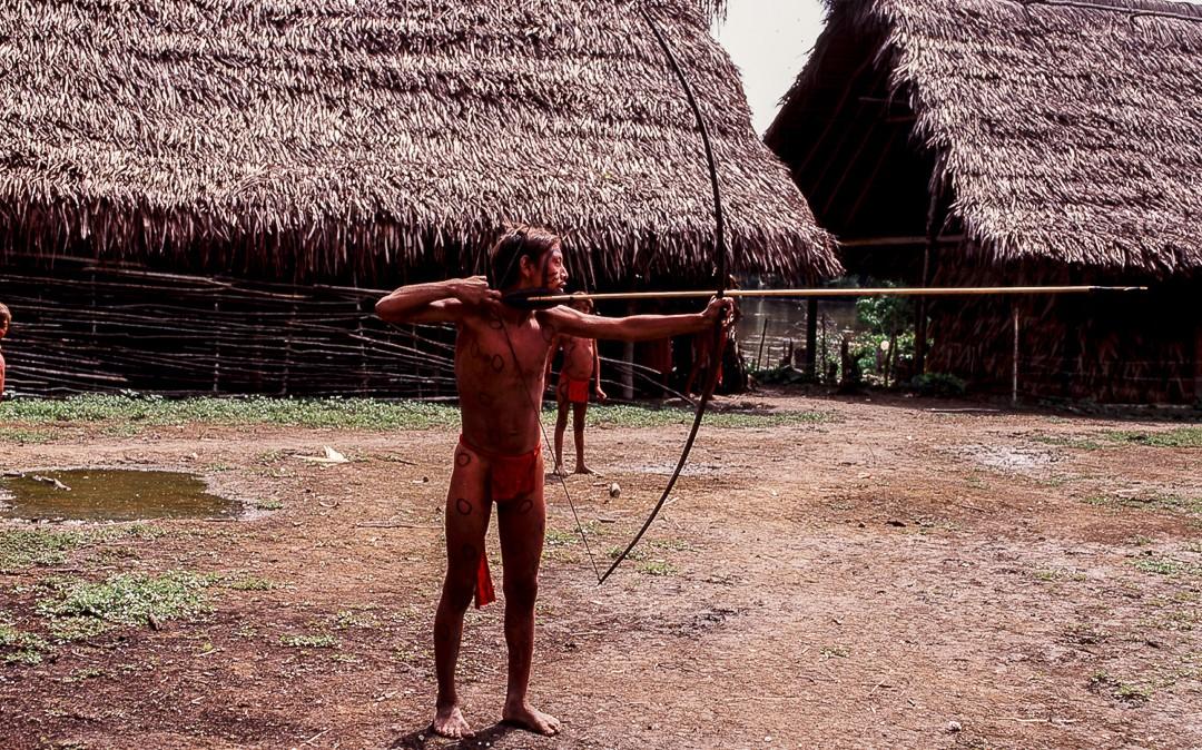 Amplificación junguiana del mito de surgimiento del yanomami