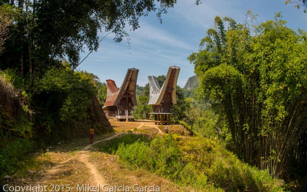 Experiencia de viajeros por Indonesia con los Tana Toraja
